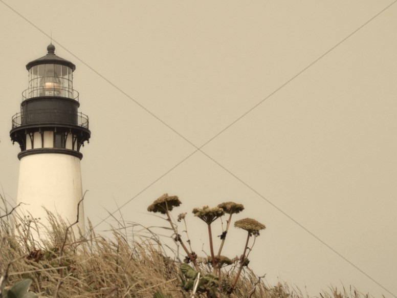 Lighthouse Landscape Worship Background