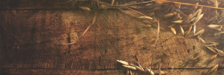 Joy of Harvest Ministry Web Banner