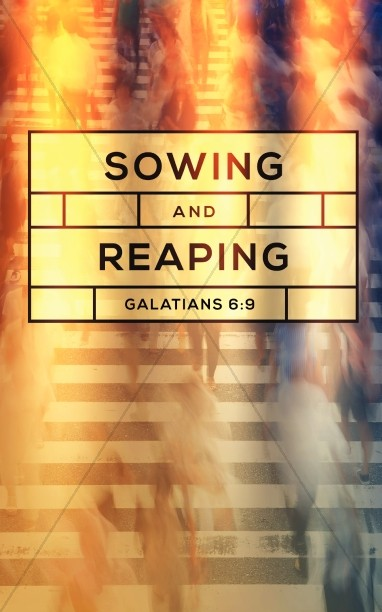 Sowing and Reaping Ministry Bulletin