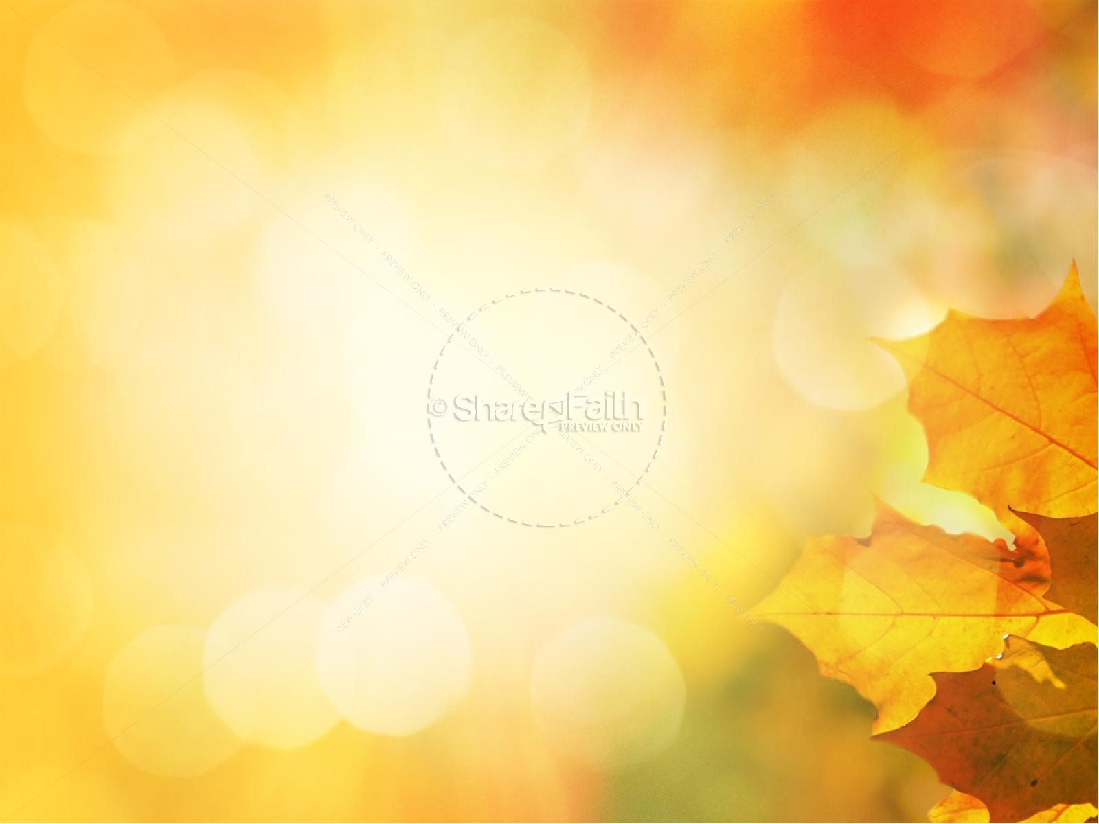 Thanksgiving Celebrate God's Goodness Christian PowerPoint   slide 6