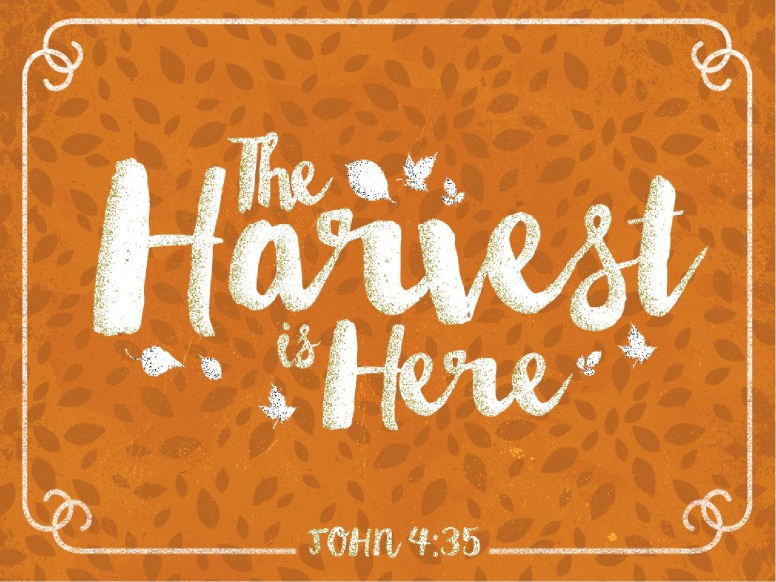 The Harvest is Here Christian PowerPoint