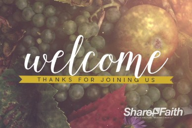 Happy Thanksgiving Fruit Bounty Welcome Motion Video