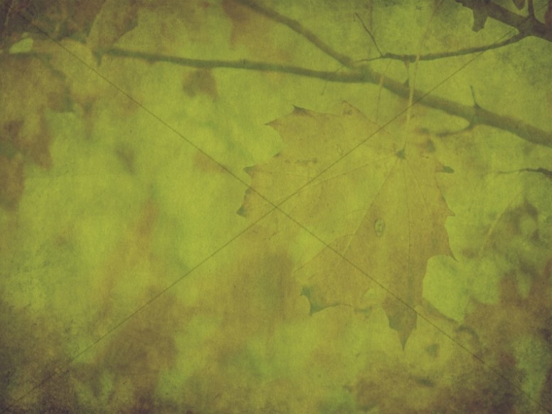 Green Thanksgiving Fall Worship Background