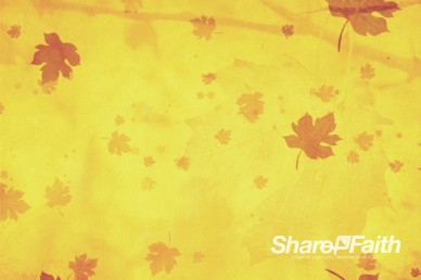 Thanksgiving Fall Christian Worship Video Background