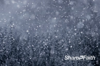 Winter Forest Snow Scene Worship Background Video