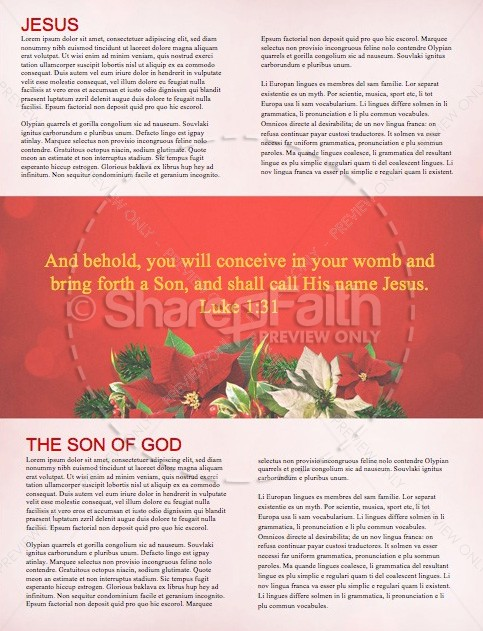 Merry Christmas Happy New Year Christian Newsletter
