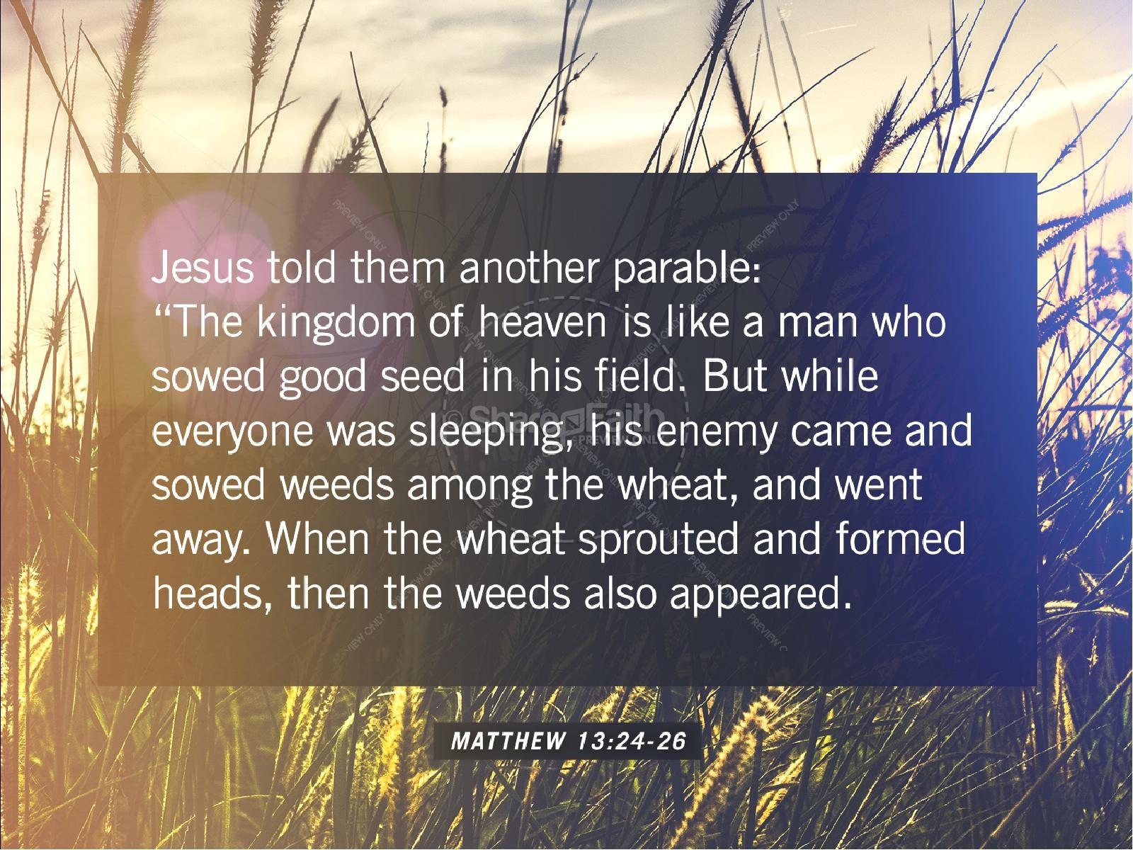 Kingdom of Heaven Wheat Church PowerPoint | slide 4