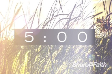 Kingdom of Heaven Wheat Countdown Timer Video