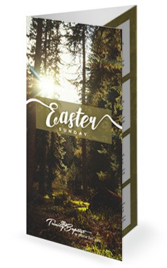 Easter Sunday Forest Church Trifold Bulletin