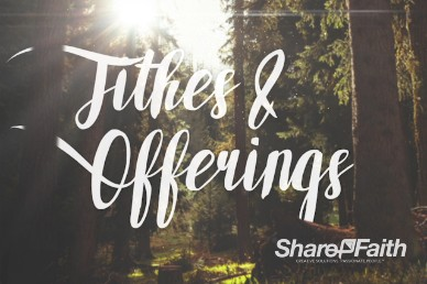 Easter Sunday Forest Tithes and Offerings Video Loop