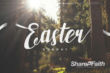 Easter Sunday Forest Sermon Title Video Loop