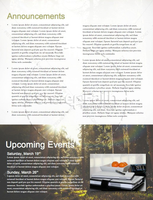 Sunlit Forest Church Newsletter