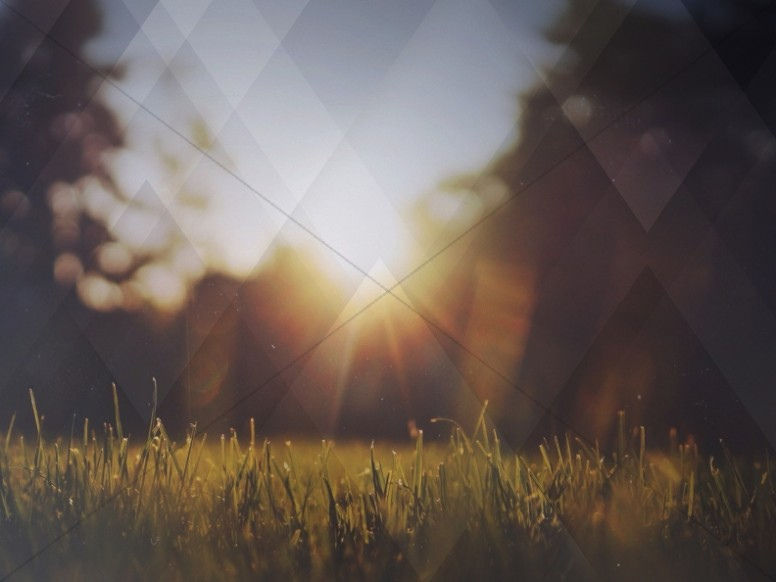 Nature Grass Field Worship Background