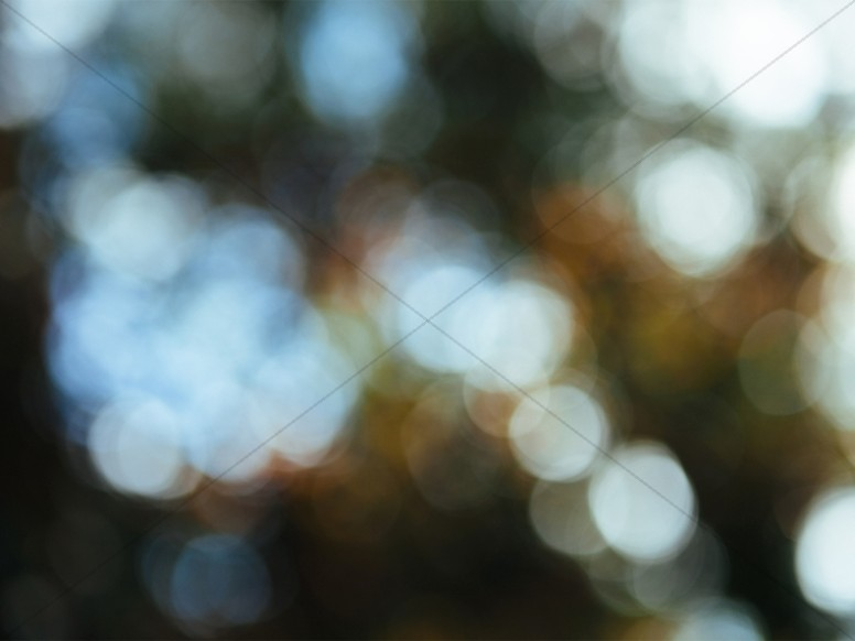Nature Bokeh Worship Background