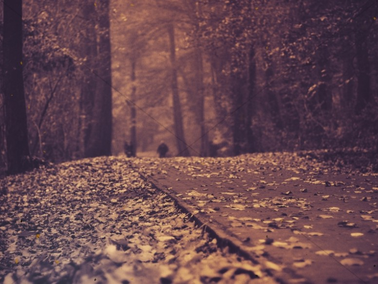 Sepia Tone Autumn Road Christian Vintage Background