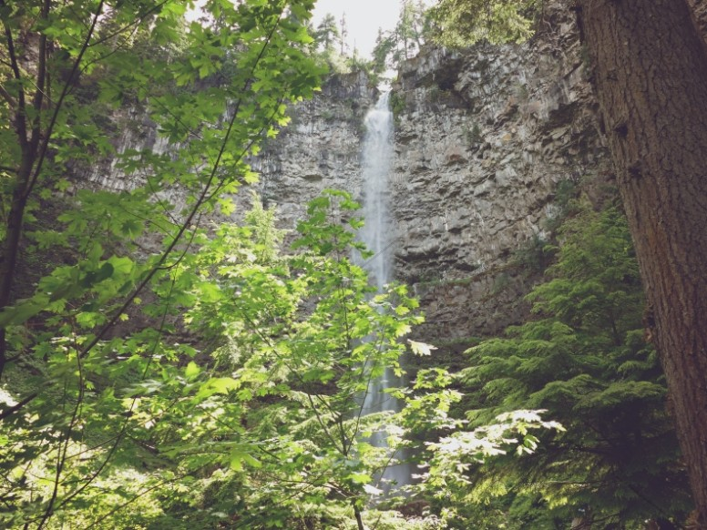 Waterfall Through The Trees Background Image