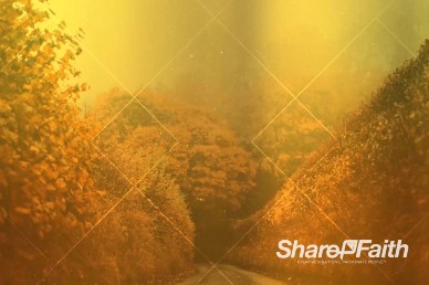 Autumn Lights Worship Video Background