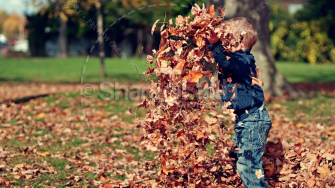 Child Jumping in Leaves Christian Stock Photo