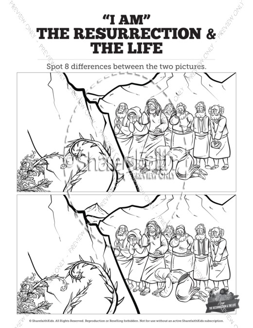 john 11 i am the resurrection and the life kids spot the difference