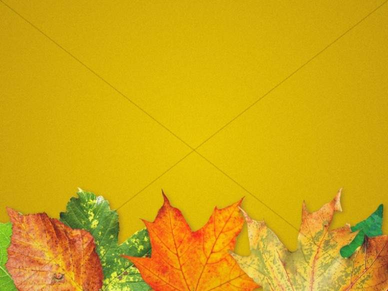 Fall Back Autumn Leaves Worship Background