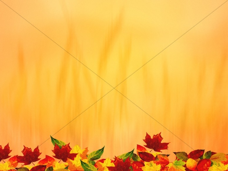Harvest Leaves Thanksgiving Background