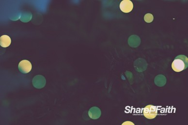 Christmas Tree Lights Worship Video Background