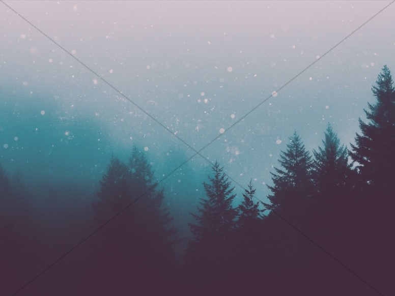 Christian Christmas Forest Worship Background