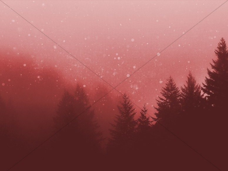Christmas Forest Christian Background