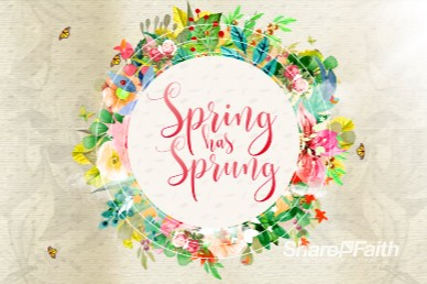 Spring Has Sprung Church Motion Graphic