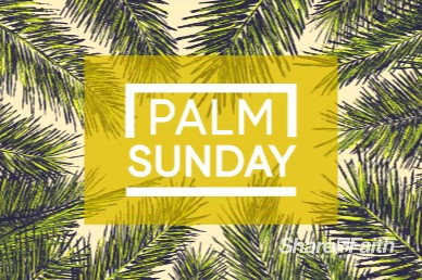 Palm Sunday Sermon Motion Graphic