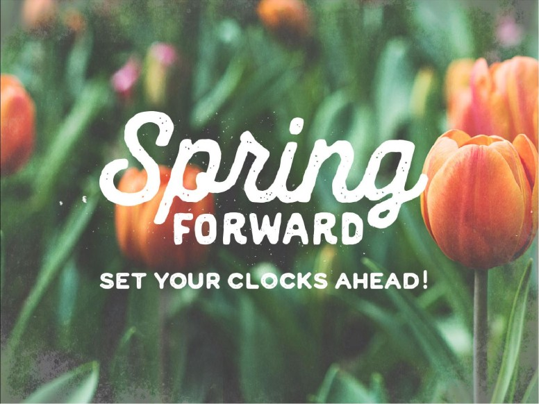 Spring Forward Tulip Church PowerPoint