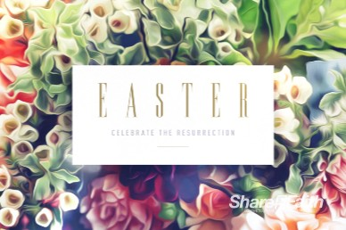 Easter Flower Church Video Loop