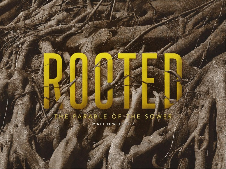 Rooted Parable Of The Sower Sermon PowerPoint