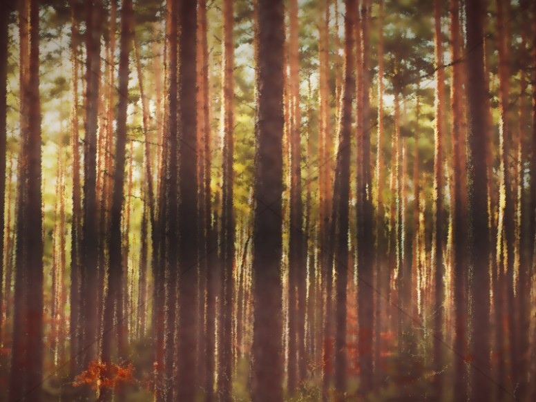 Fall Retreat Painted Trees Worship Background