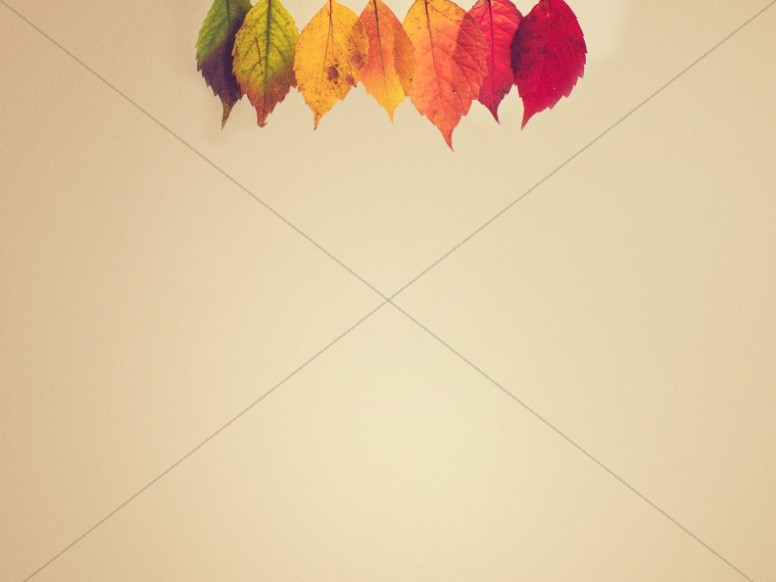 Small Groups Autumn Leaves Worship Background