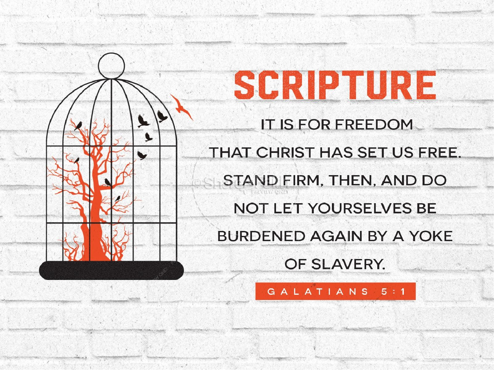 Freedom and Purpose Sermon PowerPoint