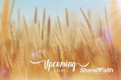 Thanksgiving Harvest Announcements Motion Graphic