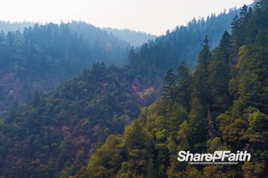 Misty Mountains Nature Background Video