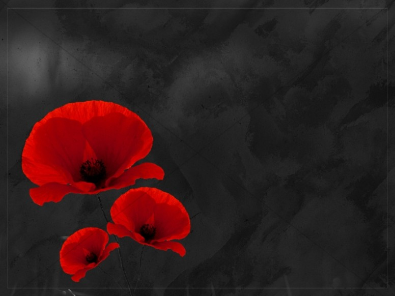 Remembrance Day Church Worship Background