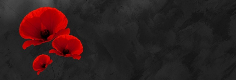 Remembrance Day Church Website Graphic