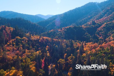 Autumn Mountain Nature Video Background