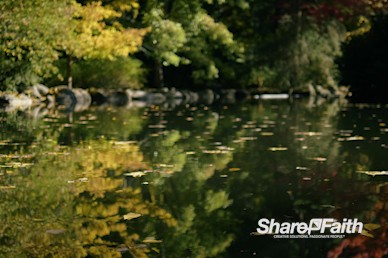 Autumn Water Reflection Nature Video Background
