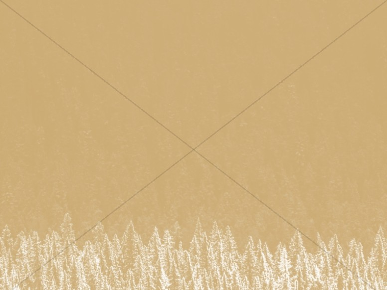 Golden Winter Christmas Worship Background