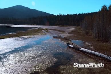 Lakeshore Nature Background Video