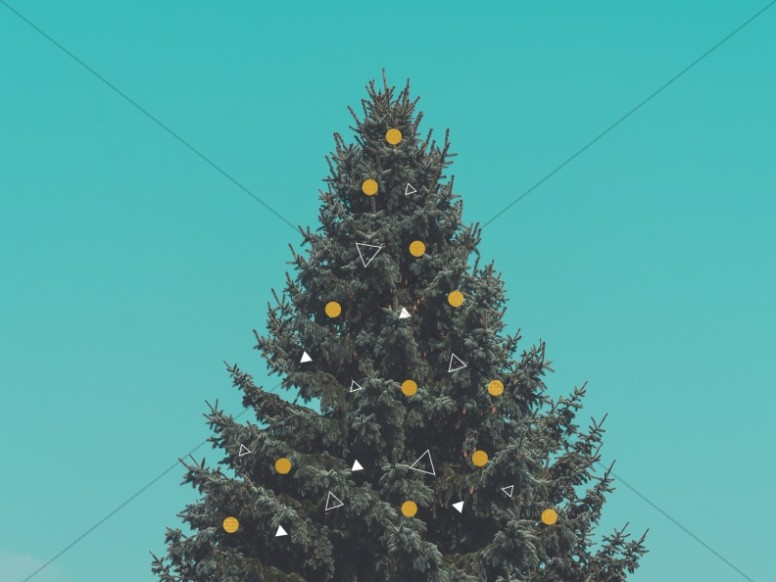Christmas Tree Holiday Church Worship Background