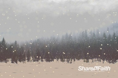 Winter Forest Worship Video Background