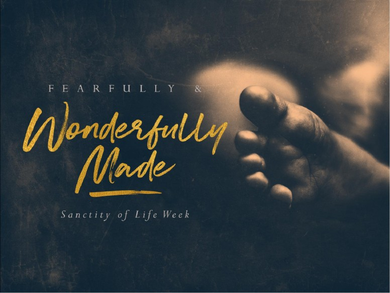 Fearfully & Wonderfully Made Sermon PowerPoint