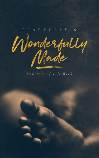 Fearfully & Wonderfully Made Church Bulletin