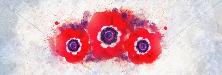 Remembrance Day Service Website Banner