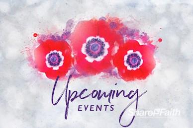Remembrance Day Announcements Bumper Video